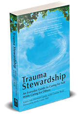 trauma-stewardship-3d-right-200x288