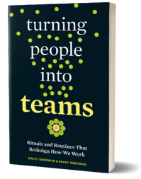 Turning-People-Into-Team_3dbookcover