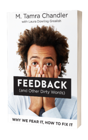 feedback-and-other-dirty-words-3d