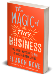 magic-of-tiny-business-3d